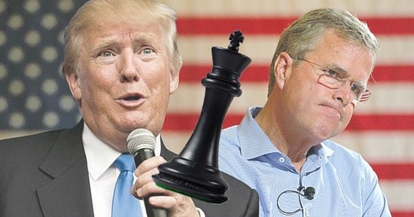domain check Trump and Jeb Bush